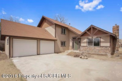 Ridgeview Drive, Farmington, NM 87401 - #: 18-729