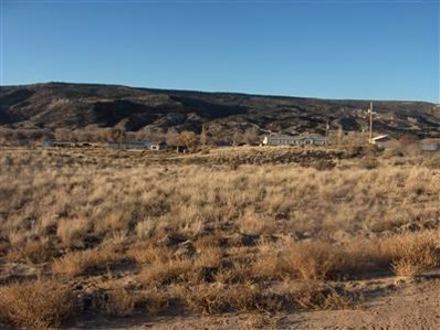 Tract C-1-A-1-A Of Cottonwood, Alcalde, NM 87511 - #: 755944