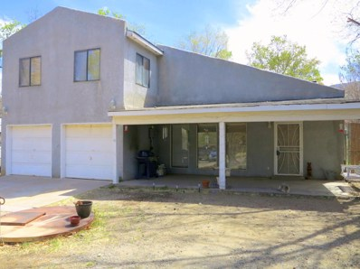 28 Canada De Los Alamos Trail NE, Albuquerque, NM 87123 - #: 916534