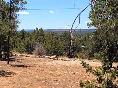 21 Cole Younger Road, Edgewood, NM 87015 - #: 917781