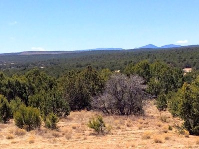 24 Cole Younger, Edgewood, NM 87015 - #: 917782