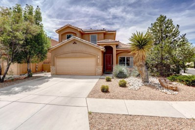 6208 Chenoa Road NW, Albuquerque, NM 87120 - #: 918390