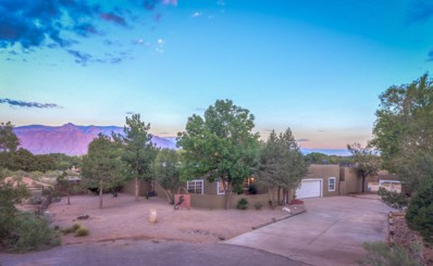 385 San Andres Road, Corrales, NM 87048 - #: 928750