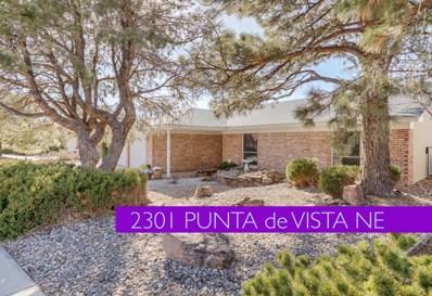 2301 Punta De Vista Drive NE, Albuquerque, NM 87112 - #: 934056