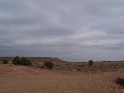 42 Settlers Place, Lake Sumner, NM 88119 - #: 935768