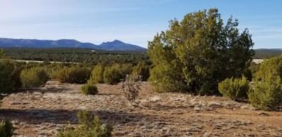 Nm 55 Highway, Torreon, NM 87061 - #: 937805