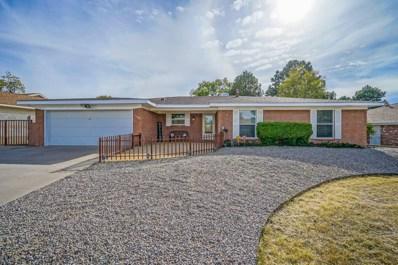 7608 Vista Del Arroyo Avenue NE, Albuquerque, NM 87109 - #: 951271