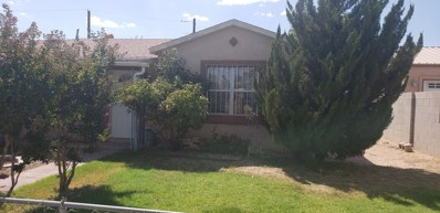 339 59Th Street NW, Albuquerque, NM 87105 - #: 953461