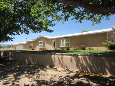 19 Private Drive 1545A, Hernandez, NM 87537 - #: 968818