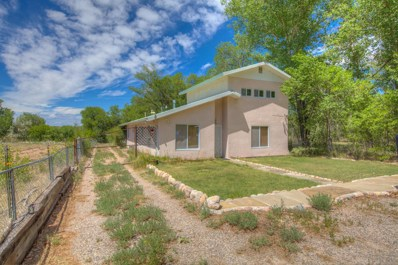333 County Road 84, Santa Fe, NM 87506 - #: 975275