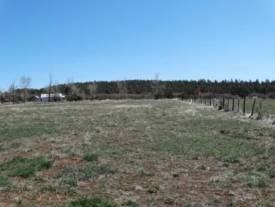 County Road 301 Track 1, Canjilon, NM 87515 - #: 989483
