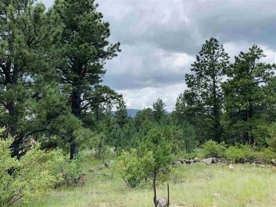 35 Susan Lane, Black Lake, NM 87734 - #: 103988