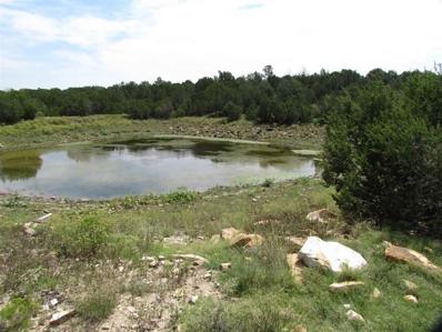 Mills Canyon Rd, Wagon Mound, NM 87752 - #: 98004