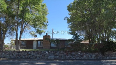 1310 Avenue D, Ely, NV 89301 - #: 2034573