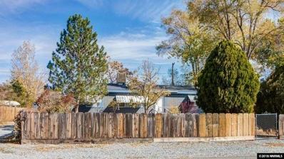 2677 Viking, Carson City, NV 89706 - #: 180005794