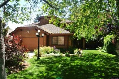 4040 Riverhaven Drive, Reno, NV 89519 - #: 180008850