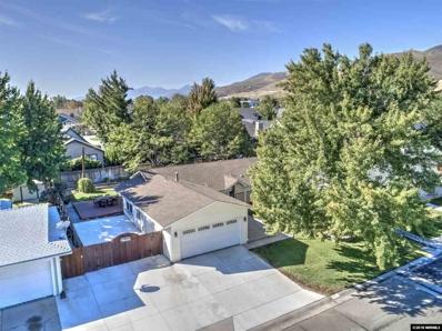401 Pat Lane, Carson City, NV 89701 - #: 180014811