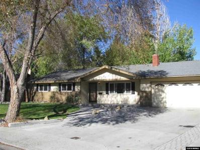 524 Jackson Way, Carson City, NV 89701 - #: 180015967
