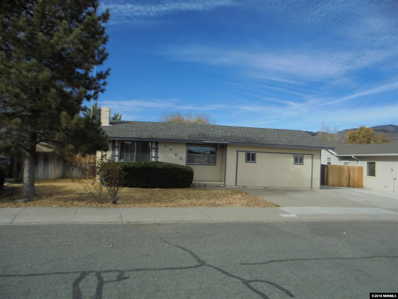 3468 Indian Dr, Carson City, NV 89705 - #: 180018012