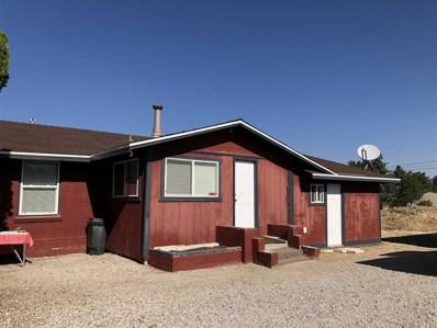 390 Flicker Circle, Washoe Valley, NV 89704 - #: 190001783
