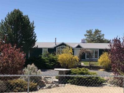 11995 Shasta Lake Road, Lovelock, NV 89419 - #: 190001931
