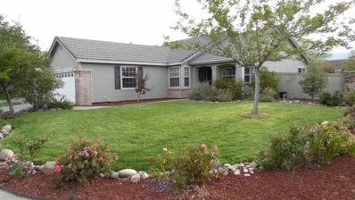 9801 Northrup Drive, Reno, NV 89521 - #: 190014173