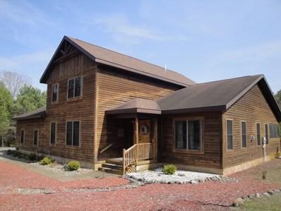 30 Iroquois Lane, Lake Placid, NY 12946 - #: 154870