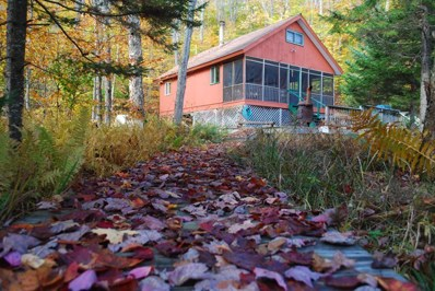 56 Eagle Crag Lake, Piercefield, NY 12973 - #: 160640