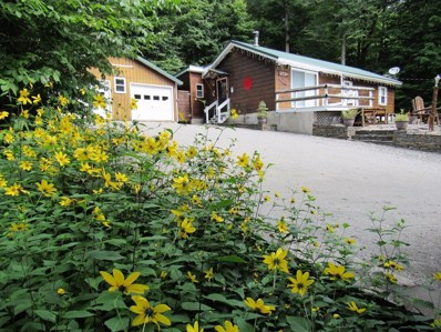 373 Mohawk Drive East, Old Forge, NY 13420 - #: 161534