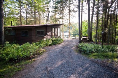 Private Rd, Indian Lake, NY 12842 - #: 162153