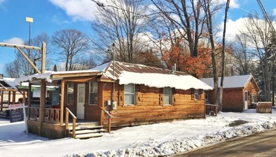 5554 State Route 28, Eagle Bay, NY 13331 - #: 162800