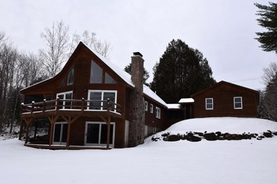 5644 State Route 30, Indian Lake, NY 12842 - #: 163147