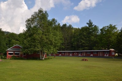 5293 State Route 30, Indian Lake, NY 12842 - #: 163168