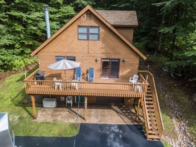 367 Mohawk Drive East, Old Forge, NY 13420 - #: 163542