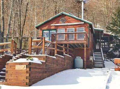 491 Hollywood Road, Old Forge, NY 13420 - #: 163957