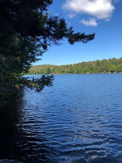 44 Eagle Crag Lake, Piercefield, NY 12973 - #: 164079
