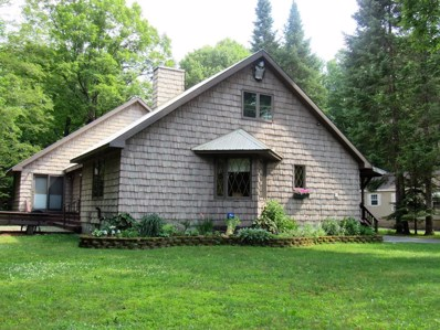 140 Moose River Trail, Old Forge, NY 13420 - #: 164315