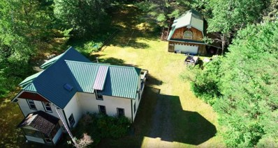 353 Keese Mills Rd, Paul Smiths, NY 12970 - #: 166685