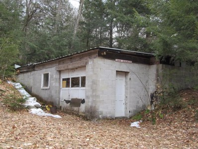 4008 State Route 30, Lake Pleasant, NY 12164 - #: 168931