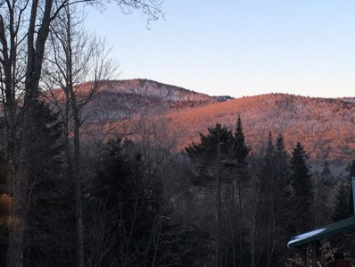 750 Keese Mills Road, Paul Smiths, NY 12970 - #: 172520