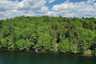 Spitfire Lake, Paul Smiths, NY 12970 - #: 173603
