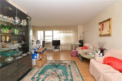 Withheld W Withheld UNIT 21H, Brooklyn, NY 11224 - #: 423893