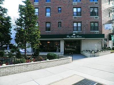 149 Marine UNIT LE, Brooklyn, NY 11209 - #: 427668