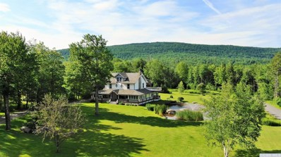 5375 Route 23A, Haines Falls, NY 12436 - #: 118591