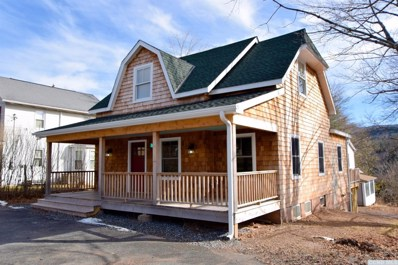 111 South Main Street, Tannersville, NY 12485 - #: 119126