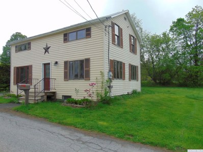 115 Lawyers Lane, Middleburgh, NY 12122 - #: 119863