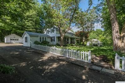 48 Hamilton Lane, Old Chatham, NY 12136 - #: 119952