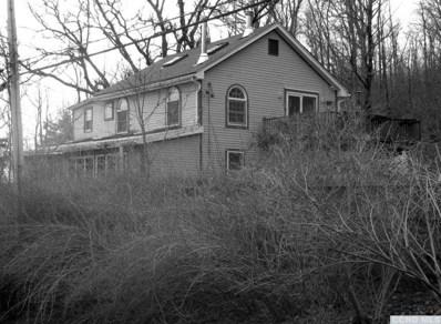 264 Winchell Mountain, Millerton, NY 12546 - #: 120384