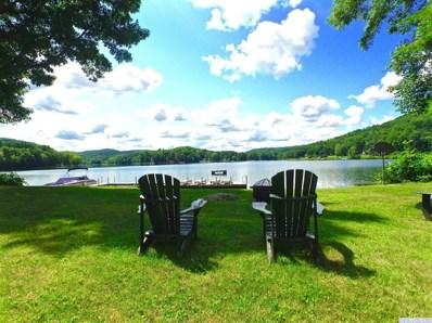 206 Queechy Lake Dr, Canaan, NY 12029 - #: 125096