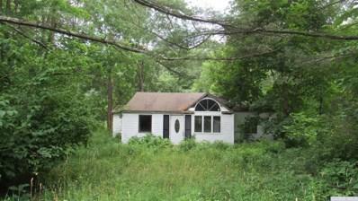 833 Potic Creek Road, Coxsackie, NY 12051 - #: 127714